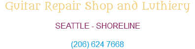 Guitar Repair Shop and Luthiery